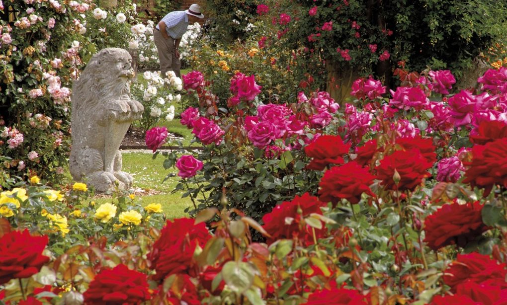 A Treasure Trove of English Gardens