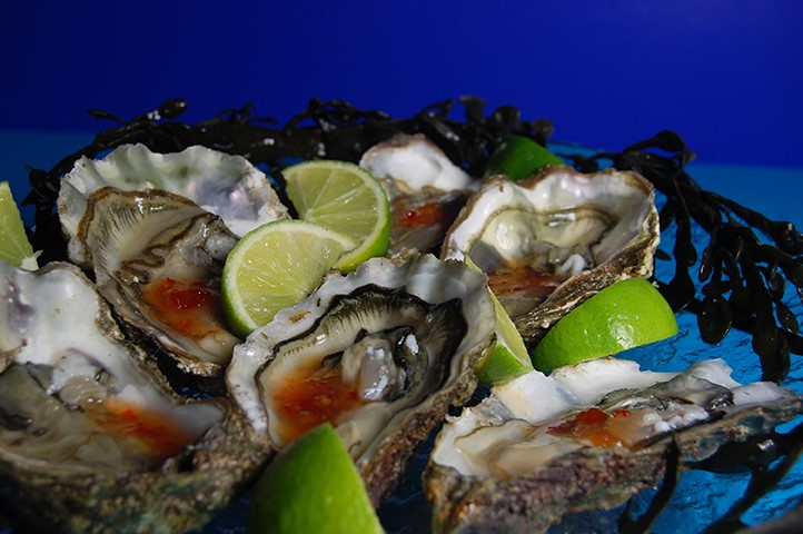 Gourmet Ireland with the Galway Oyster Festival